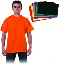 CAMISETA COLOR ADULTO